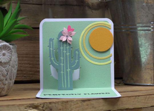 biglietto cactus pop up 05-18 copertina