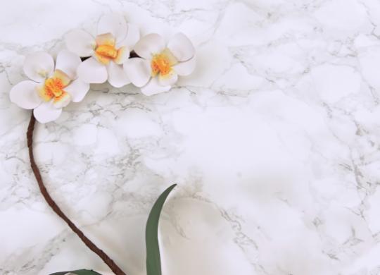 Eine Orchidee aus Papier basteln #3056